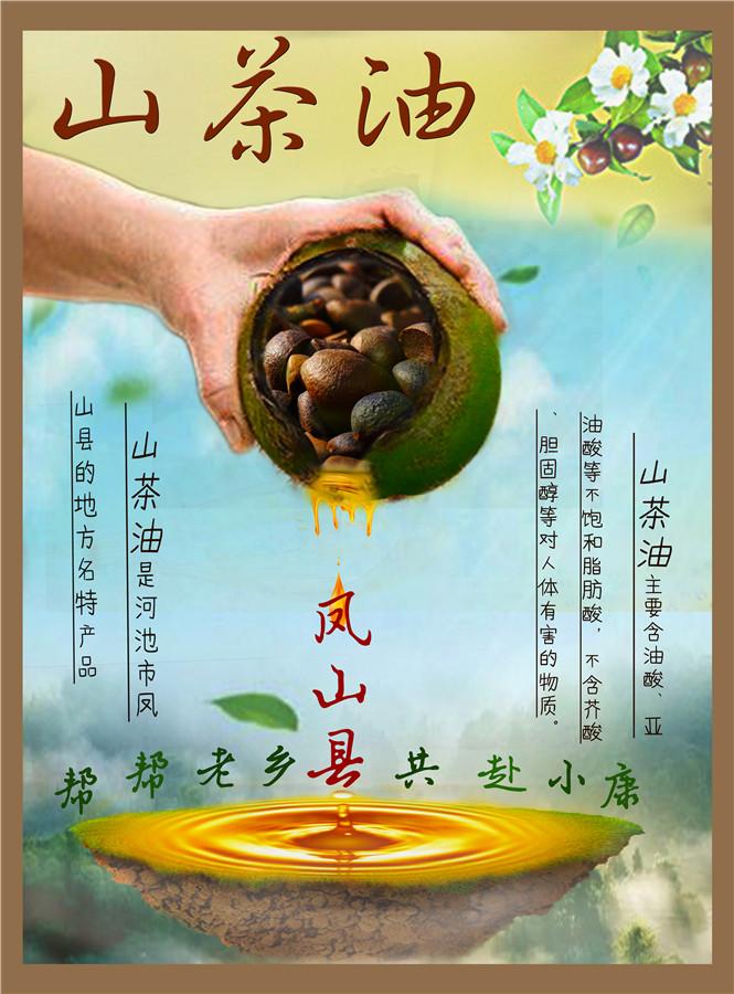 凤山县山茶油
