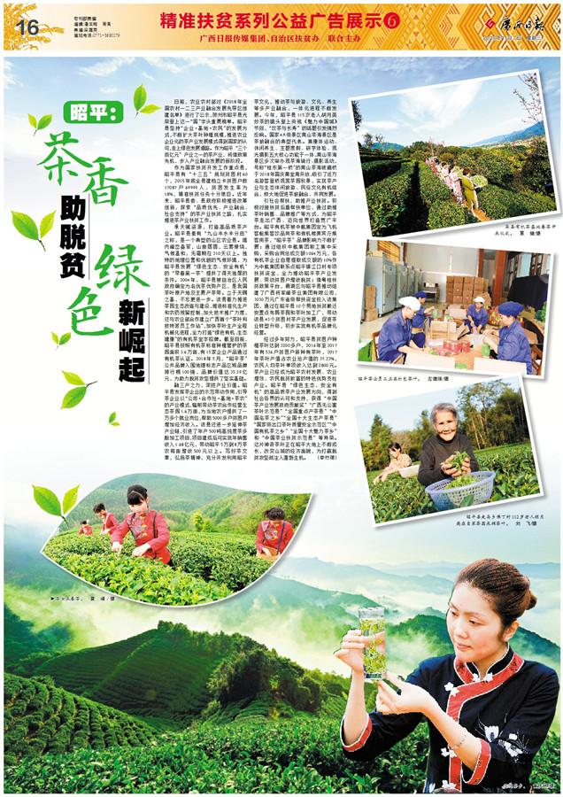 ��广西日报��昭平��茶香助脱贫 绿色新崛起