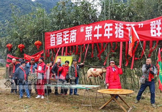 河池环江下南乡举办菜牛年猪节欢庆新年(图)