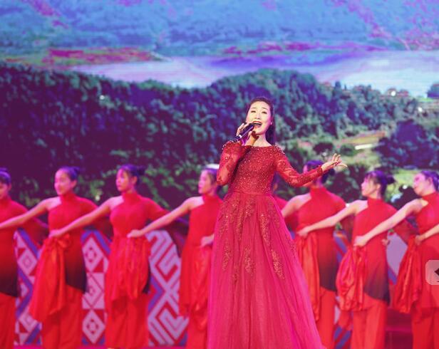 2019中国(广西)壮语春节联欢晚会顺利举办