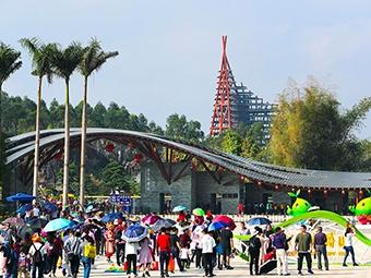 2月8日焦点图:南宁市园博园景区游客络绎不绝