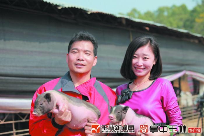 """""""陸川豬哥""""黃祖東:豬是吉祥物,養豬成就了我"""