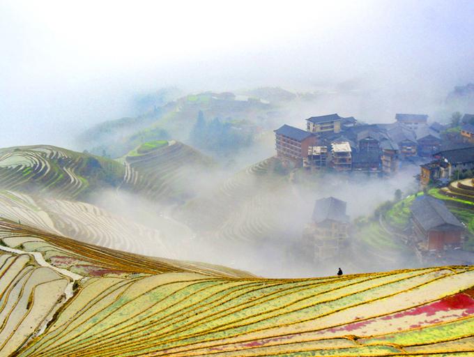 高清:桂林龙脊梯田雨后云雾缭绕 自然美景迎客来