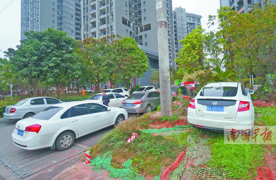 """2月17日焦点图:小区停车位""""只售不租"""" 外边满里边空"""