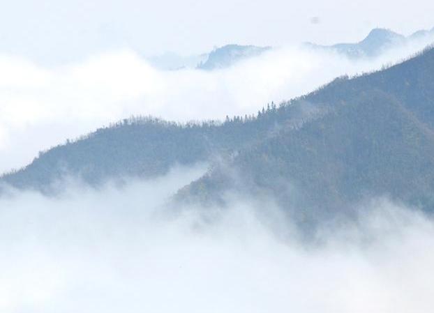 高清组图:隆林清晨云雾缭绕如仙境