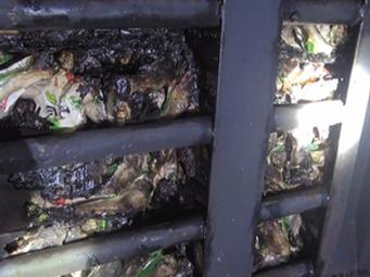 一货车在兰海高速上自燃 一车鸡爪全被烤焦(图)