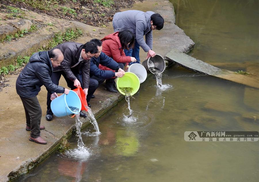 广西三江£º增殖放流护生态