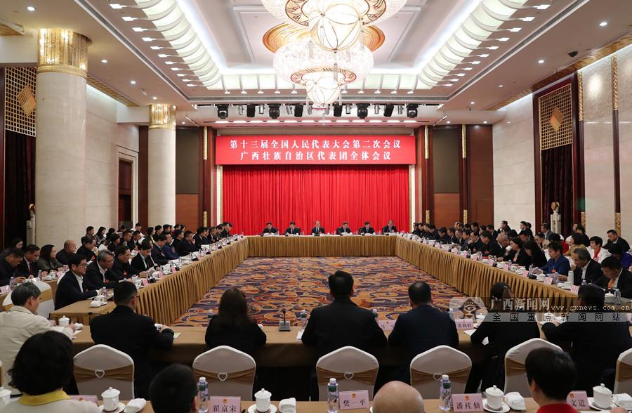 十三届全国人大二次会议广西代表团举行第一次全体会议