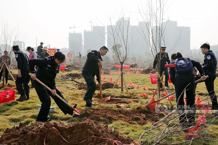 广西多地开展植树活动 东盟六国驻邕使节共植友谊树