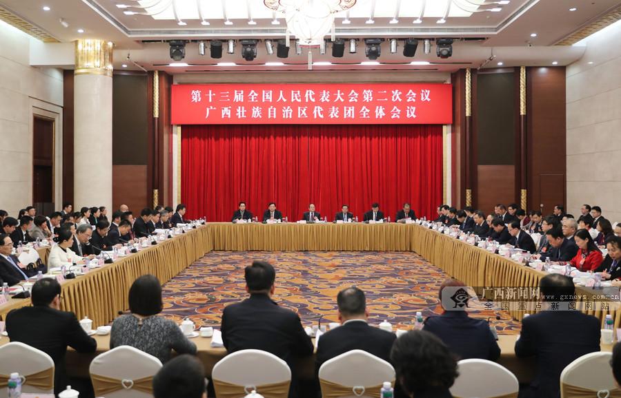 广西代表团审议各项决议草案
