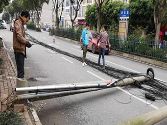 视频|险!南宁一货车刮上电缆 拉倒三根水泥电杆