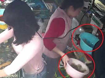 3月16日焦点图:南宁一海鲜摊主用死虾坑骗消费者