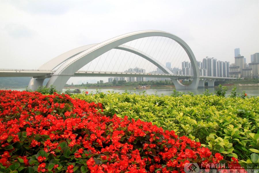 阳春三月 繁花映衬南宁生态美(组图)