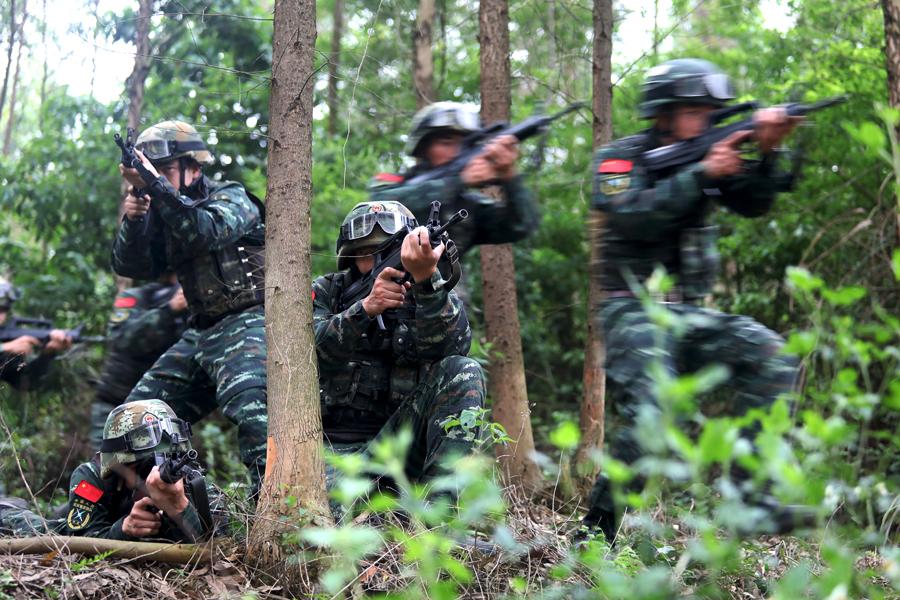 高清:武警特战队员开展山林地捕歼战斗