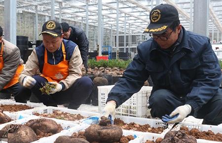 2018年广西农业发展成就回眸(四):强农关键在人才