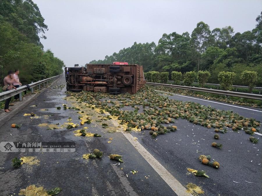大货车爆胎高速路上侧翻 菠萝撒满地(组图)