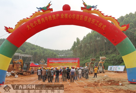 大化六恩肉牛扶贫产业核心示范区建设项目开工