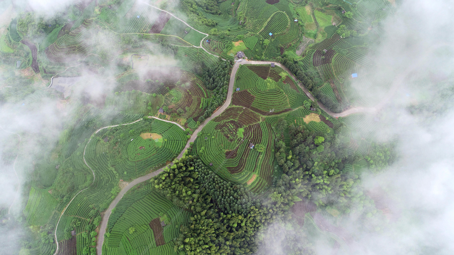 高清:三江仙人山景区雨后云雾蒸腾宛若仙境