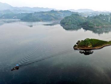 六安茶谷景色美