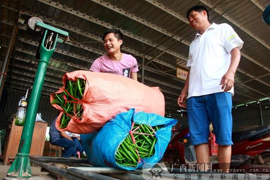 南宁市邕宁区:果蔬产品卖得俏 产业增效农民笑