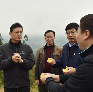 柳州市人大常委会:依法履职强化监督 推动脱贫攻坚工作扎实有效开展