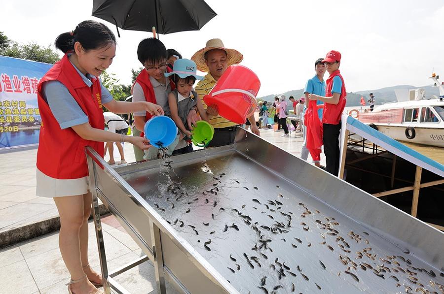 """柳州柳城:增殖放流 保护""""母亲河"""""""