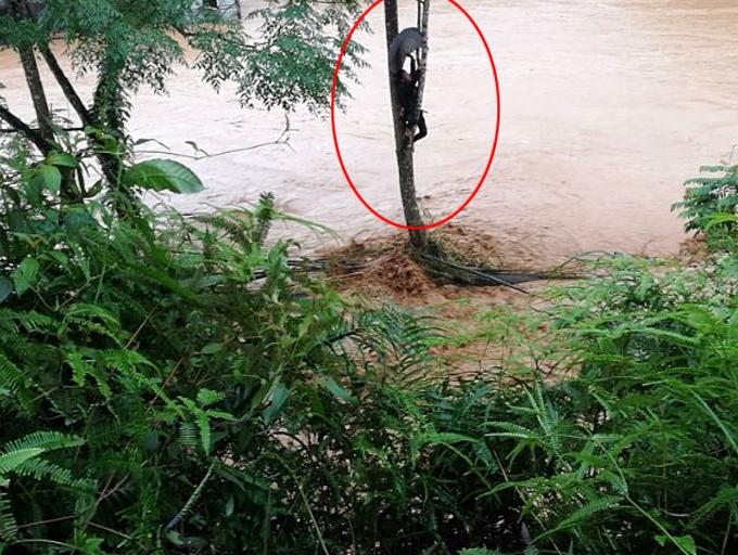 组图:广西苍梧县受强降雨袭击发生洪涝灾害
