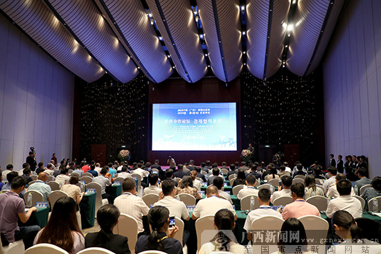 2019中国(广西)-韩国友好周经济论坛在南宁举办