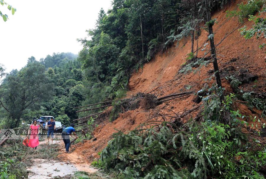 高清:广西融安受到暴雨袭击 有大桥被洪水淹没
