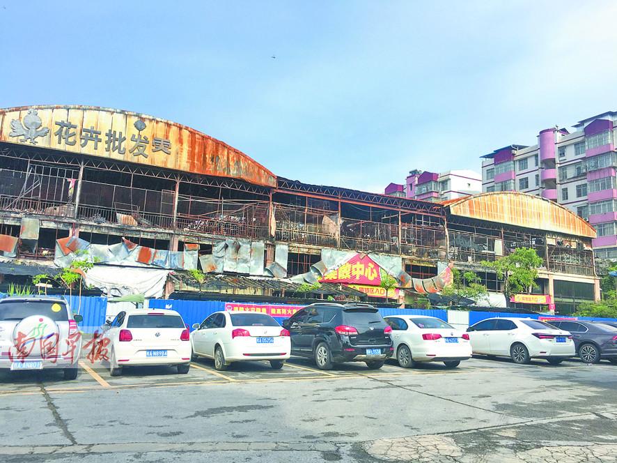 7月25日焦点图:整顿百天 广西花鸟市场重新开业