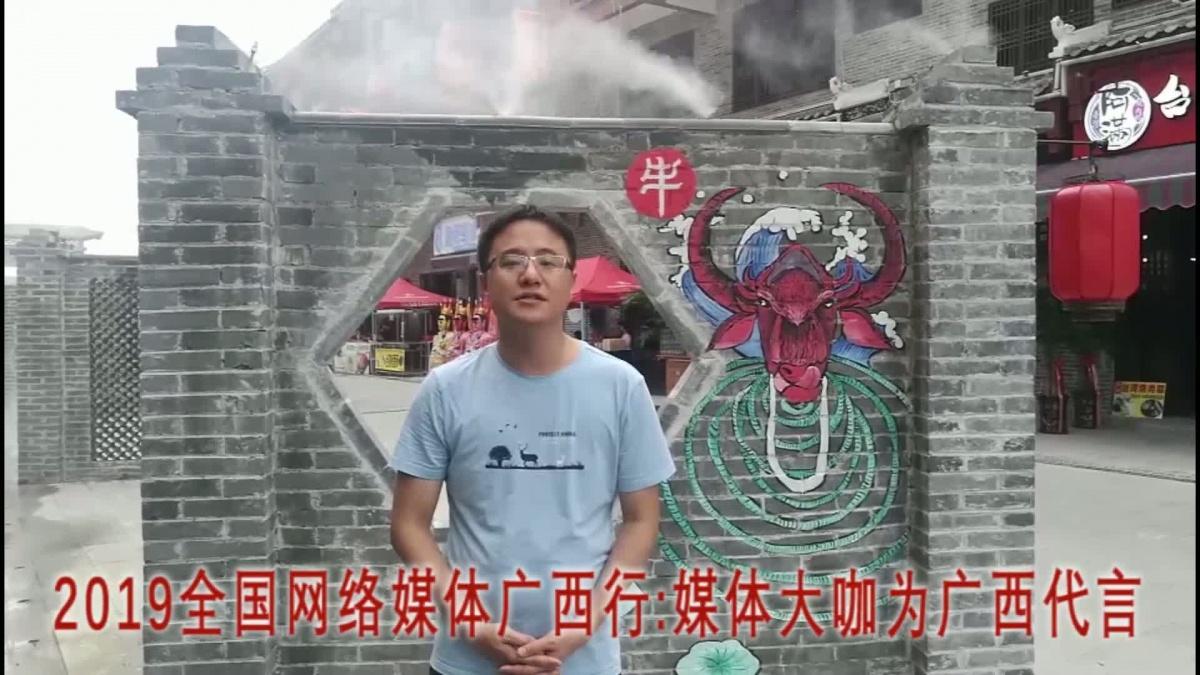 媒体大咖为广西代言:央视网记者肖潇