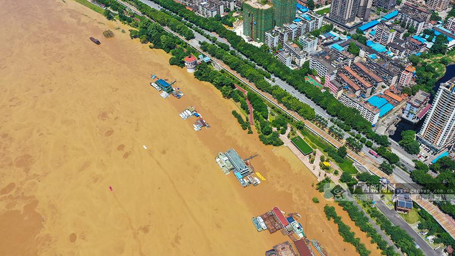 航拍:洪峰过境!南宁城区河段迎来2019年最大洪水
