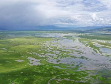 水草丰美的藏北牧场