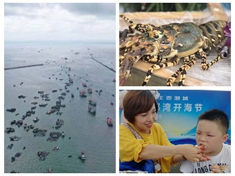扬帆出海!防城港、北海、钦州举办开海节(组图)