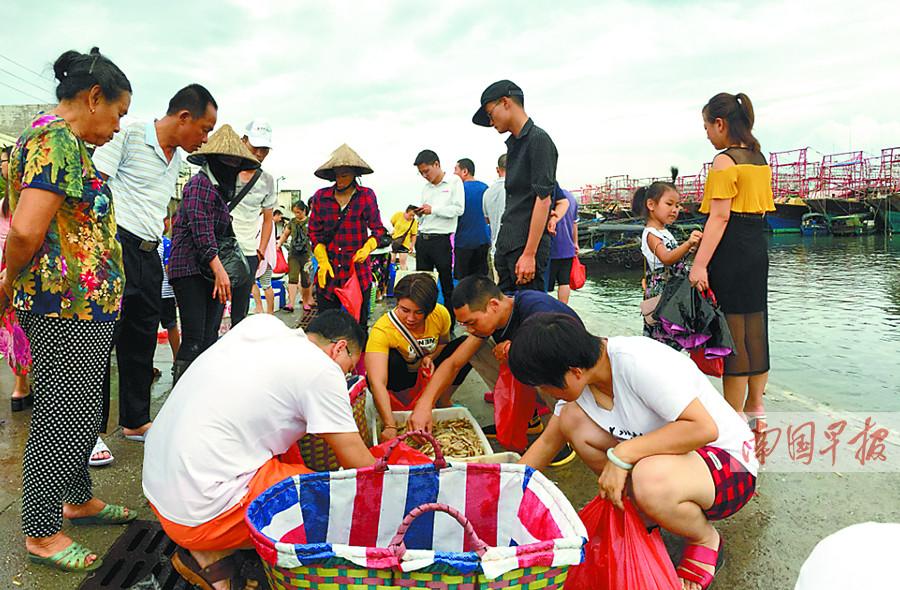 """8月18日焦点图:广西开海""""首捕""""上岸 海鲜价有所降"""