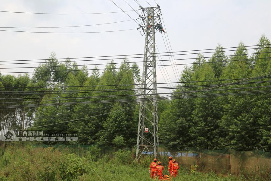 高清:南宁一男子上高压电塔摘蜂窝被电流击穿