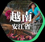 越南·安江省|鱼米之乡物产丰富