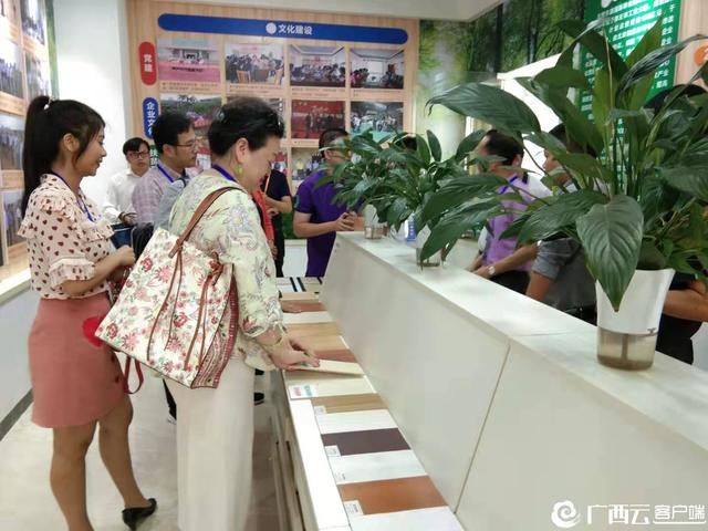 华文媒体记者点赞崇左林业!他们说……