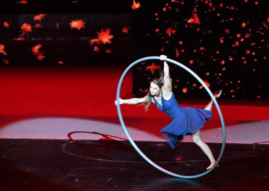 第十七屆中國吳橋國際雜技藝術節在石家莊開幕