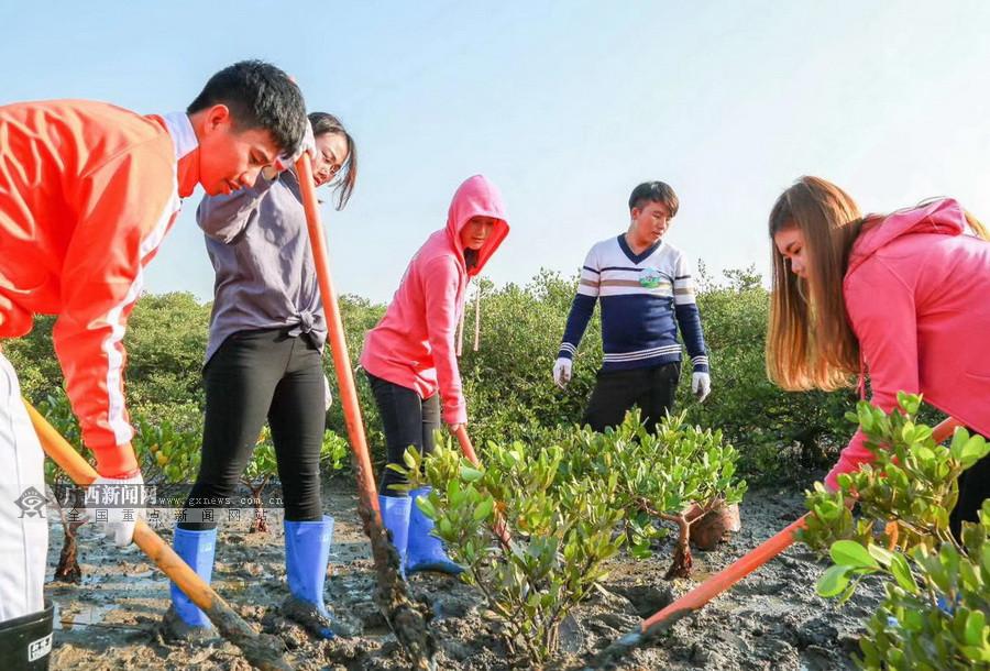 中柬两国青年在北海开展环保文化交流活动