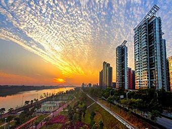 12月9日焦點圖:南寧天際出現魚鱗云 蔚為壯觀