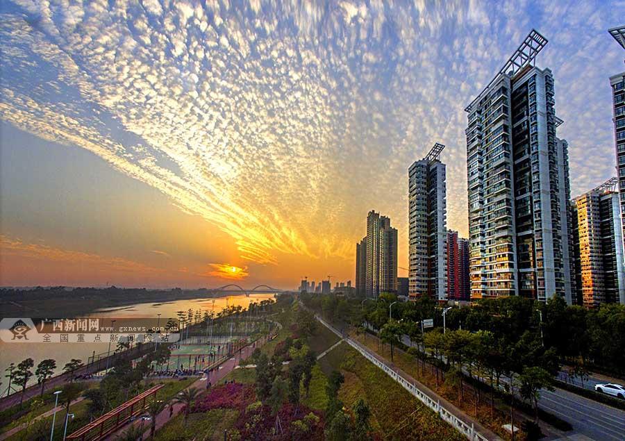 12月9日焦点图:南宁天际出现鱼鳞云 蔚为壮观