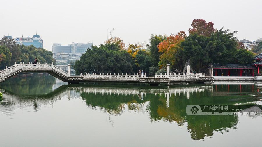 """桂林迎冬日最佳观赏期 绚丽色彩尽染""""两江四湖"""""""