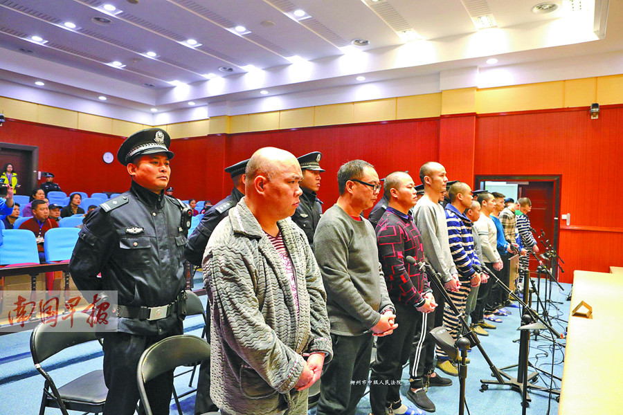 12月19日焦点图:毒枭张加爱犯十宗罪,死刑!