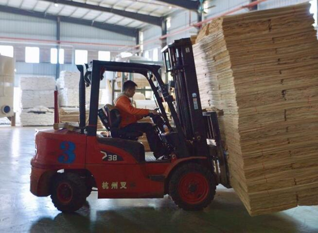 廣西扶綏:林業助推經濟發展