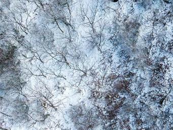高清组图:美如画!桂林资源雪景大片欣赏