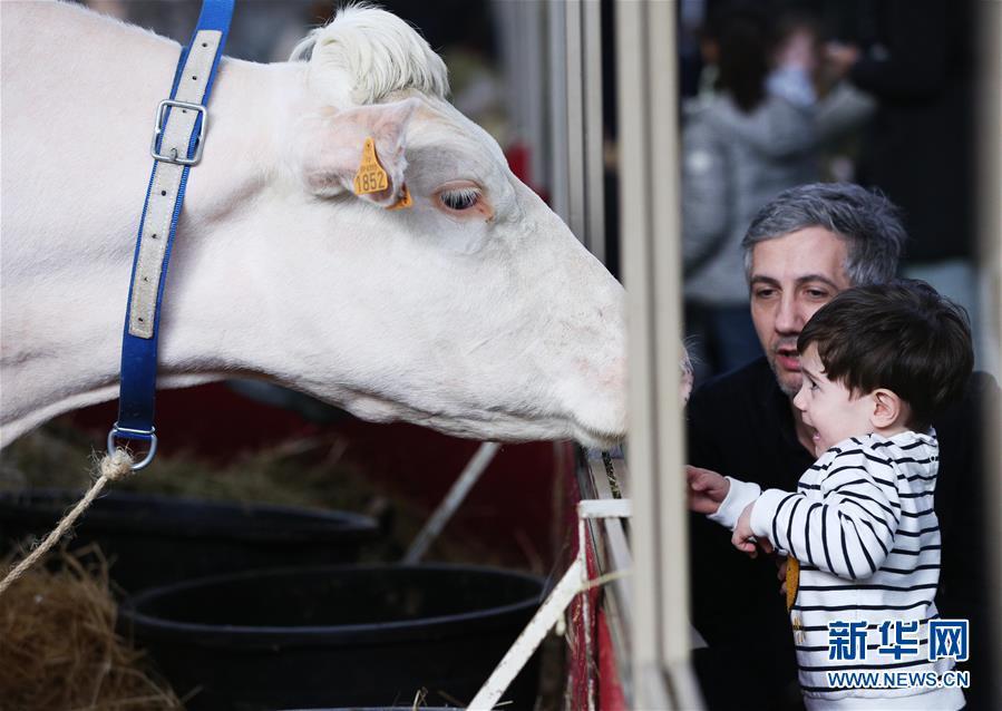 第57届法国国际农业博览会开幕