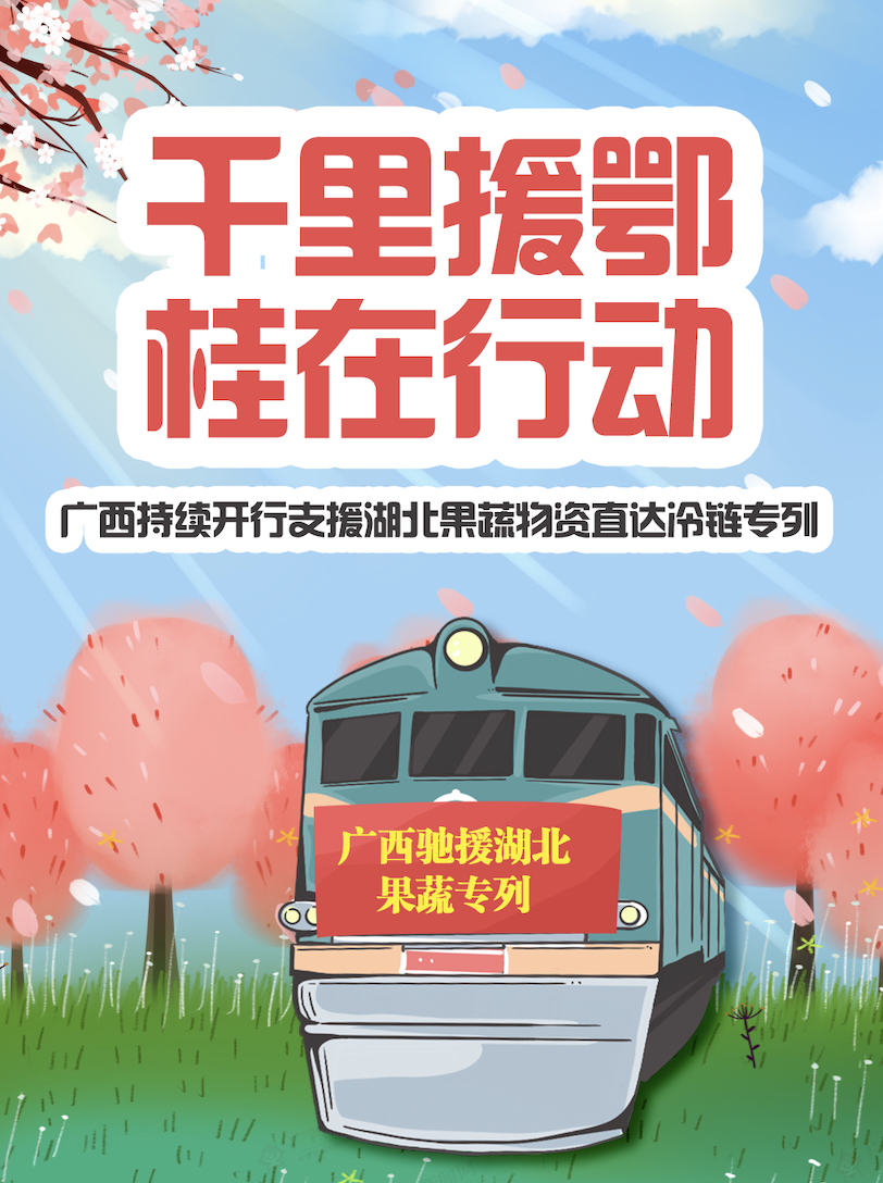 图解|广西持续开行支援湖北果蔬物资直达冷链专列