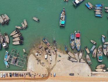 福建漳浦:复渔复产渔港忙