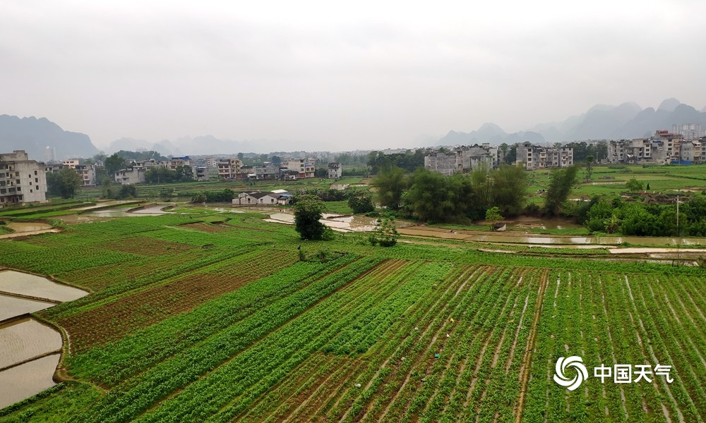 河池:降雨短暂停歇 农民春耕忙